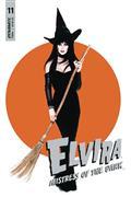 Elvira Mistress of Dark #11 Cvr D Photo
