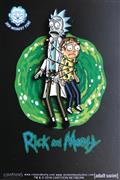 Rick And Morty Tangled In Xmas Lights Pin (C: 1-1-2)