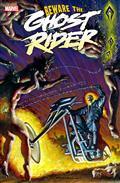 Ghost Rider #1 Texeira Var