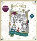 HARRY-POTTER-COLORING-WIZARDRY-SC-(C-0-1-0)