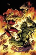 Hulk #11 *Clearance*