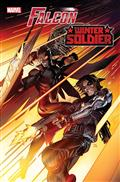 Falcon & Winter Soldier #1 Poster