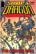 Savage Dragon #245 (MR)