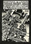 Teenage Mutant Ninja Turtles Artisan Ed HC