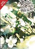 IS-WRONG-PICK-UP-GIRLS-DUNGEON-NOVEL-SC-VOL-13-(C-0-1-2)