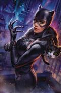 Catwoman #21 Ian Macdonald Var Ed