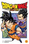 Dragon Ball Super GN Vol 12