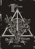 Harry Potter Deathly Hallows Canvas (C: 1-1-1)