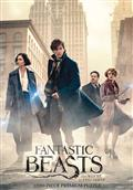 FANTASTIC-BEASTS-SEARCH-1000-PC-PUZZLE-(C-0-1-2)