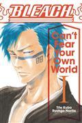 BLEACH-CANT-FEAR-YOUR-OWN-WORLD-LIGHT-NOVEL-SC-VOL-01-(C-1-