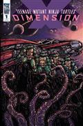 TMNT Dimension X #1 10 Copy Incv (Net)