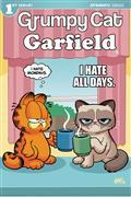 Grumpy Cat Garfield #1 (of 3) Cvr D Fleecs