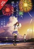 Fireworks Should See Side Bottom Light Novel HC Vol 01 (C: 0