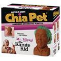 Chia Pet Karate Kid Mr Miyagi (C: 1-1-2)