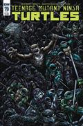 TMNT Ongoing #70 Subscription Var (C: 1-0-0)