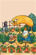 ADVENTURE-TIME-COMICS-11-SUBSCRIPTION-WANG-CVR-(C-1-0-0)