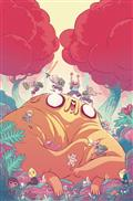 Adventure Time Comics #23 (C: 1-0-0)