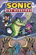 Sonic The Hedgehog #17 Cvr A Lawrence (C: 1-0-0)