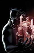 Rise of Black Panther #1 (of 6) Renaud Var Leg
