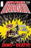 Savage Dragon #256 (MR)
