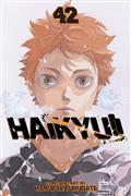 Haikyu GN Vol 42 (C: 1-1-2)