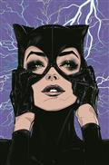 DC Poster Portfolio Joelle Jones TP