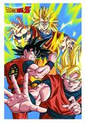Dbz Ss3 Goku Tin Wall Sign (Net) (C: 1-1-1)