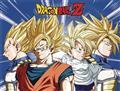 Dbz Cell Saga Super Saiyans Sublimation Throw Blanket (C: 1-