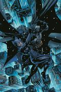 Batman Catwoman #1 (of 12) Cvr B Jim Lee & Scott Williams Var