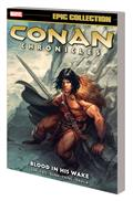 Conan Chronicles Epic Collection TP Blood In His Wake (MR)