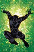 Black Panther #167 Leg