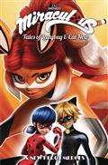 MIRACULOUS-TALES-LADYBUG-CAT-NOIR-TP-S2-VOL-06-NEW-HERO