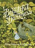 BEAUTIFUL-DARKNESS-GN