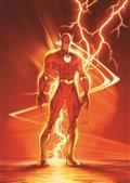 Flash By Geoff Johns Omnibus Vol 02 HC