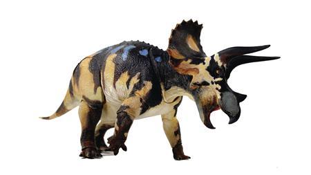 BEASTS OF MESOZOIC CERATOPSIAN TRICERATOPS HORRIDUS 1/18 FIG