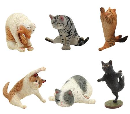 ANIMAL LIFE YOGA CAT 8PC BMB DIS (C: 1-1-2)